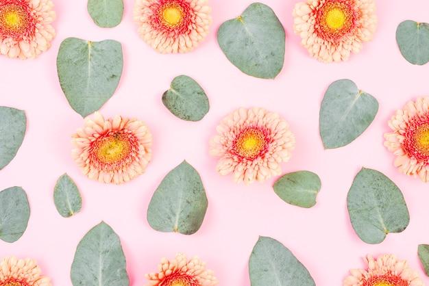 Gerbera flor e folhas verdes padrão no pano de fundo rosa Foto gratuita