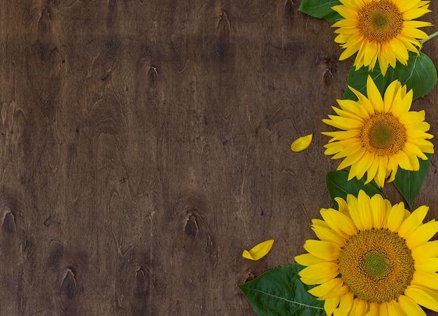 Girassóis lindos frescos na vista superior do plano de fundo de madeira Foto Premium