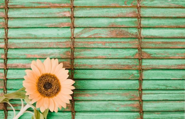 Girassol na esquina do pano de fundo listrado de madeira Foto gratuita