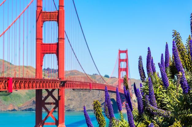 Golden gate bridge san francisco flores roxas califórnia Foto Premium