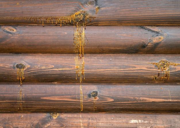 Gotas de resina caem da parede de madeira da casa durante as altas temperaturas do verão. Foto Premium