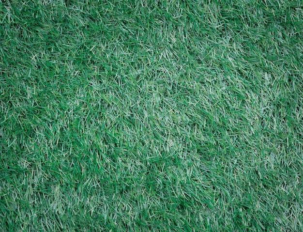 Grama verde Foto Premium