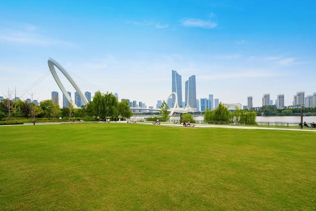 Gramado do parque e horizonte da cidade de nanjing, china Foto Premium