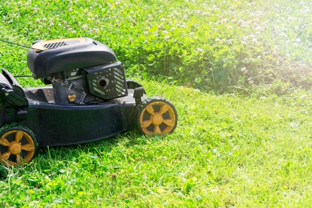 Gramado ensolarado da estação do verão e de mola que sega no jardim. Foto Premium