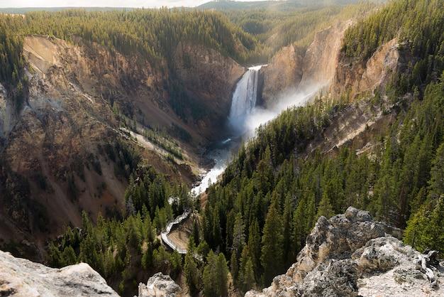Grand canyon do parque nacional de yellowstone Foto Premium