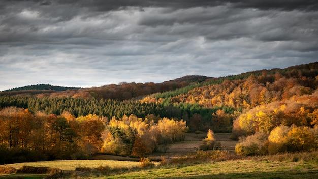 Grande plano de colinas arborizadas com um céu nublado em segundo plano durante o dia Foto gratuita