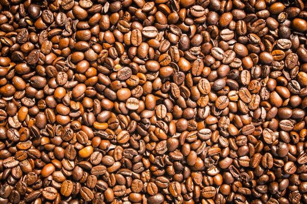Grãos de café castanha e sementes Foto gratuita