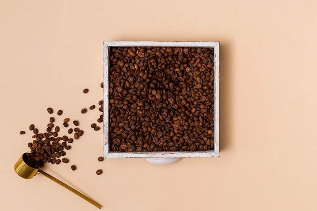 Grãos de café em um recipiente Foto gratuita