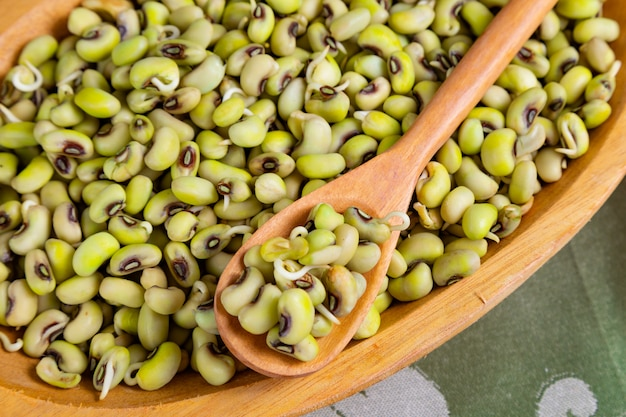 Green string bean - comida típica do nordeste com óleo de dendê Foto Premium