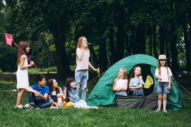 Grupo de adolescentes acampar na floresta Foto gratuita