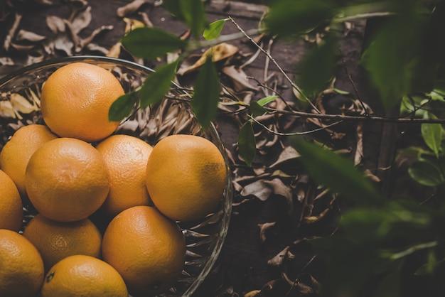 Grupo de laranjas recém colhido e seção em uma cesta Foto gratuita