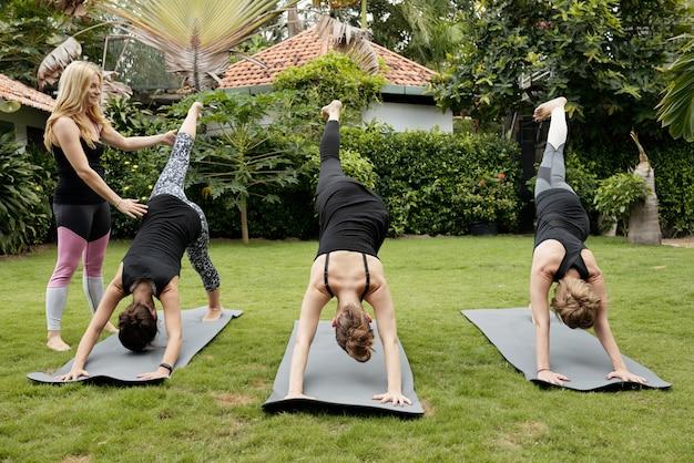 Grupo de mulheres fazendo yoga ao ar livre, realizando pose de golfinho Foto gratuita