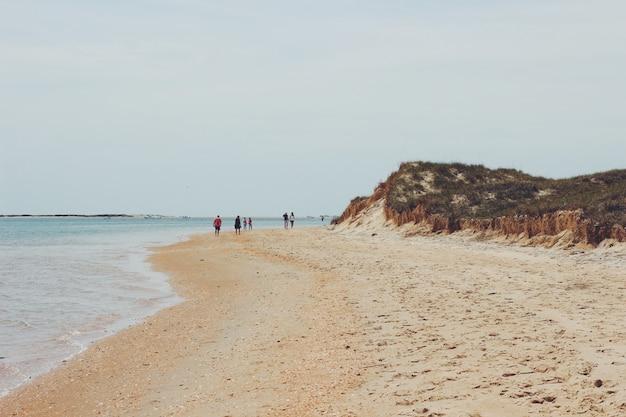 Grupo de pessoas caminhando na praia ao lado da praia Foto gratuita