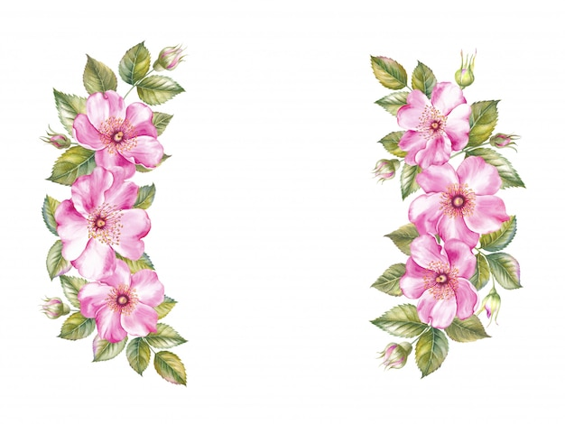 Guirlanda vintage de quadro de rosas florescendo Foto Premium