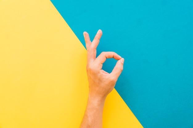 Hand making ok sign Foto gratuita