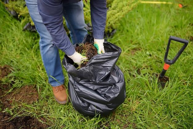 Homem cavando uma pá para plantar zimbro no quintal Foto Premium