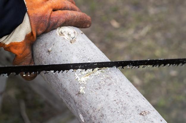 Homem corta madeira com uma serra manual Foto Premium