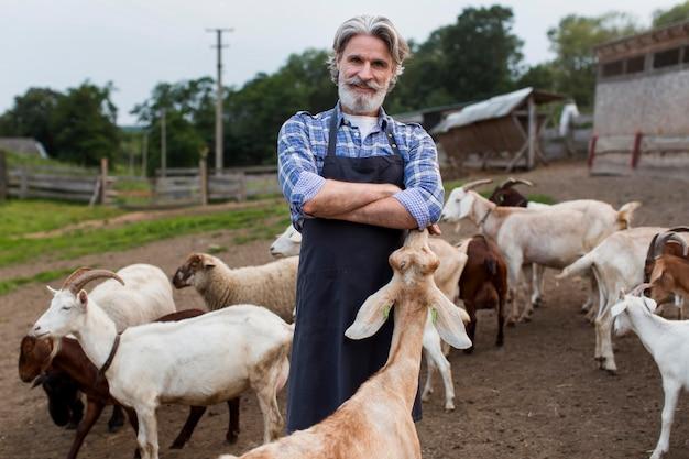 Homem de ângulo baixo alimentando cabras Foto gratuita