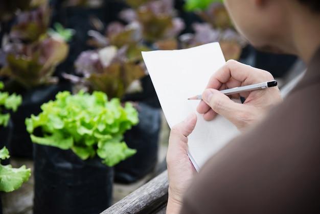 Homem de fazenda trabalhando em seu jardim de alface orgânico Foto gratuita
