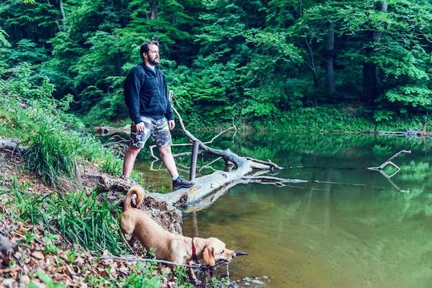 Homem de pé no tronco de árvore e olhando para a distância Foto Premium