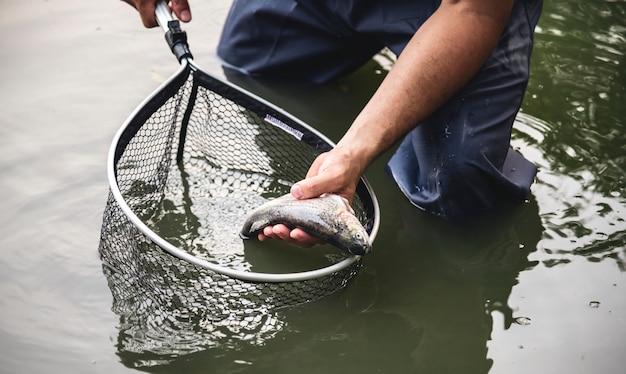 Homem, pesca, por, a, lago Foto Premium