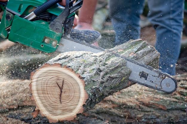 Homem que corta a parte de madeira com serra de cadeia. Foto Premium