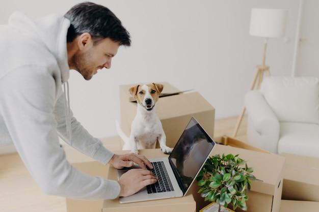 Homem que trabalha duro satisfeito ocupado procurando informações no computador portátil em pé em caixas de papelão, seu animal de estimação doméstico coloca perto, mover-se no novo apartamento, sofá e lâmpada de assoalho conceito imobiliário Foto Premium