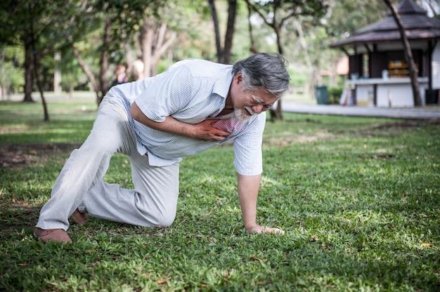 Homem superior que guarda sua caixa e que sente a dor que sofre do cardíaco de ataque no parque. Foto Premium