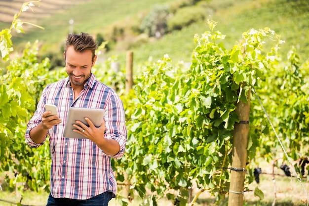 Homem usando tablet e telefone na vinha em dia ensolarado Foto Premium