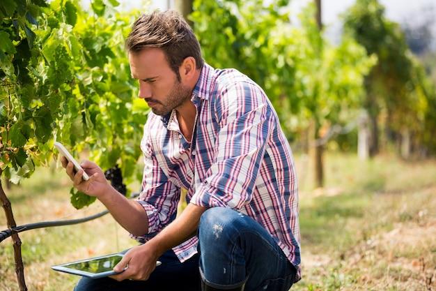 Homem usando telefone enquanto segura o tablet na vinha Foto Premium