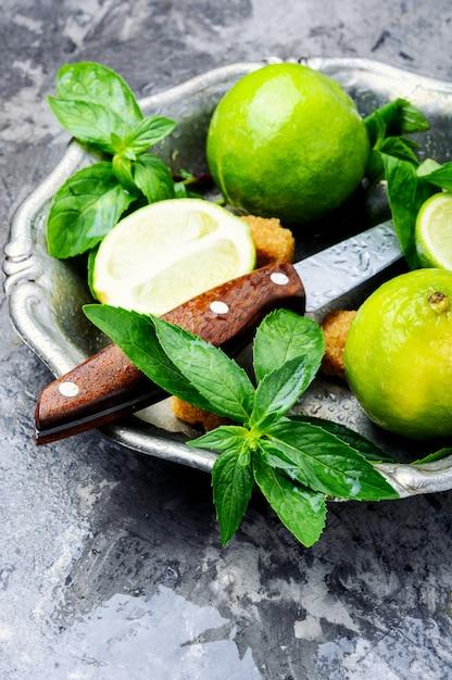 Hortelã fresca verde e limão Foto Premium