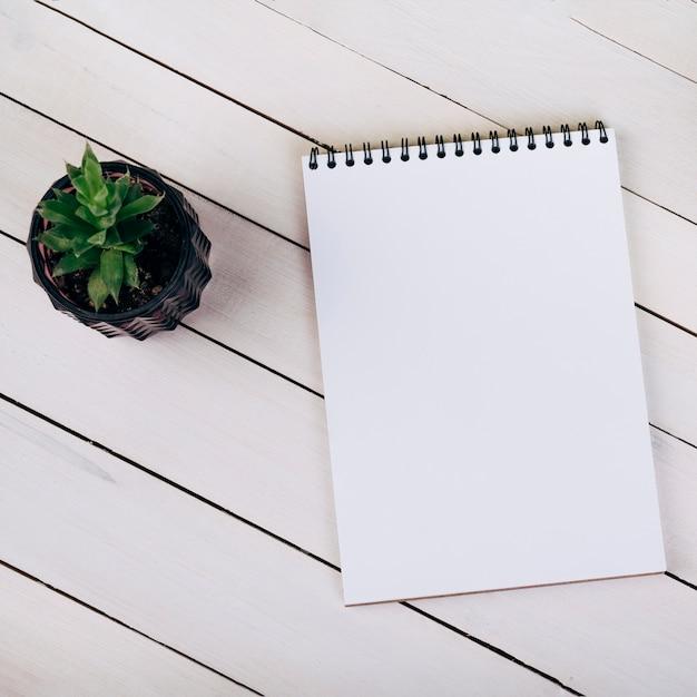 Houseplant perto do bloco de notas em branco espiral em branco de madeira Foto gratuita