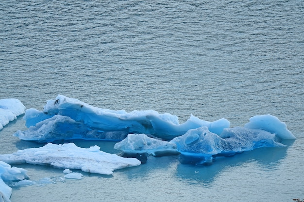 Icebergs da geleira perito moreno flutuando no lago argentino, patagônia, argentina Foto Premium