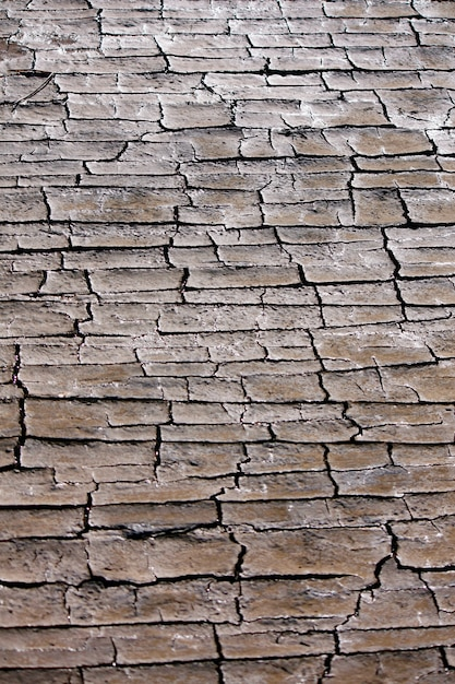 Ideia próxima da textura de alguma terra dessecada com muitas rachaduras. Foto Premium