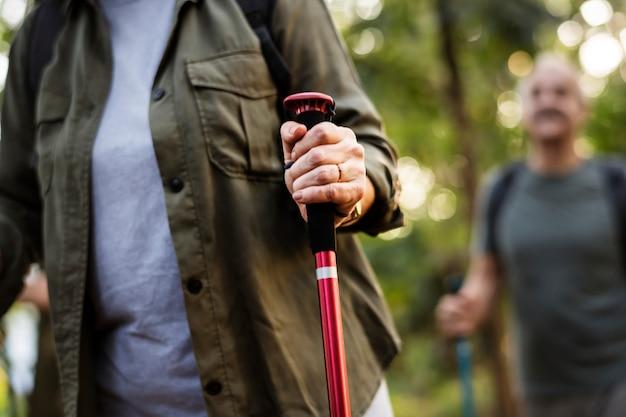 Idosos, trekking, em, um, floresta Foto gratuita