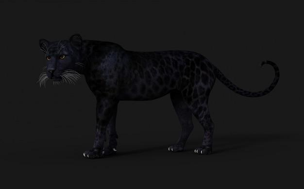 Ilustração 3d black panther isolate no preto Foto Premium