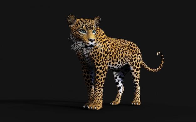 Ilustração 3d do leopardo isolado no fundo preto Foto Premium