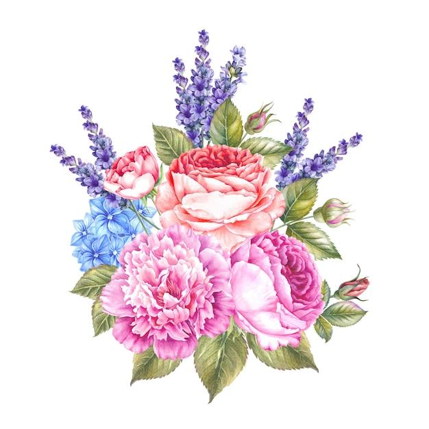 Ilustração botânica da aguarela das rosas e da alfazema. Foto Premium