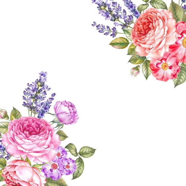 Ilustração botânica em aquarela. Foto Premium
