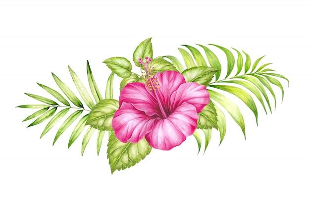 Ilustração da aguarela da flor e das folhas de palmeira tropicais do hibickus. Foto Premium