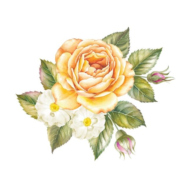 Ilustração em aquarela de flor rosa isolada Foto Premium