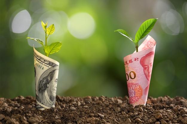 Imagem da nota de china yuan e notas de dólar dos eua com planta crescendo em cima para negócios, economia, crescimento, econômico Foto Premium