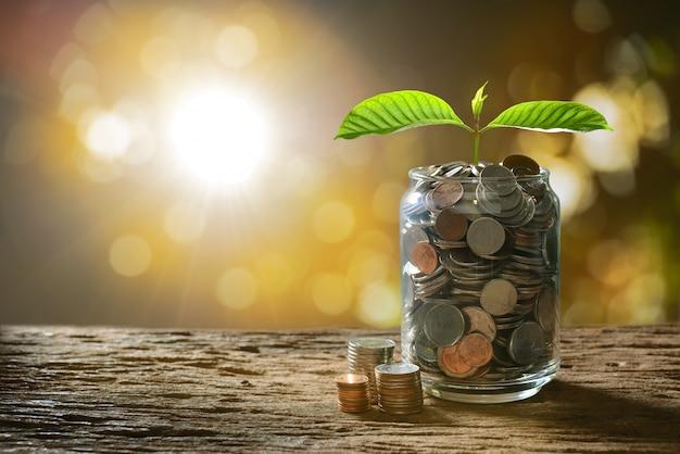Imagem da pilha de moedas com planta em cima no frasco de vidro para negócios Foto Premium