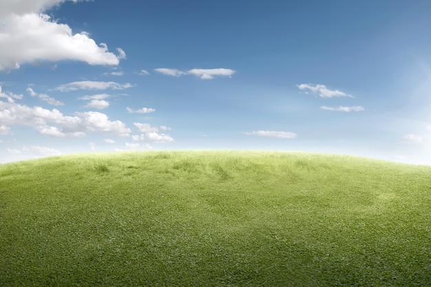 Imagem de campo de grama verde Foto Premium