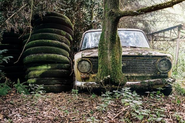 Imagem de um carro abandonado e abandonado em uma floresta Foto gratuita