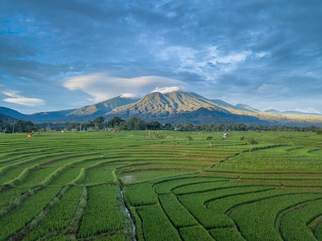 Indonésia aérea paisagem beleza natureza verde montanha Foto Premium