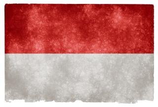 Indonésia grunge bandeira cinza Foto gratuita