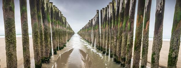 Instalações de quebra de ondas de madeira no mar do norte, zelândia, holanda Foto gratuita