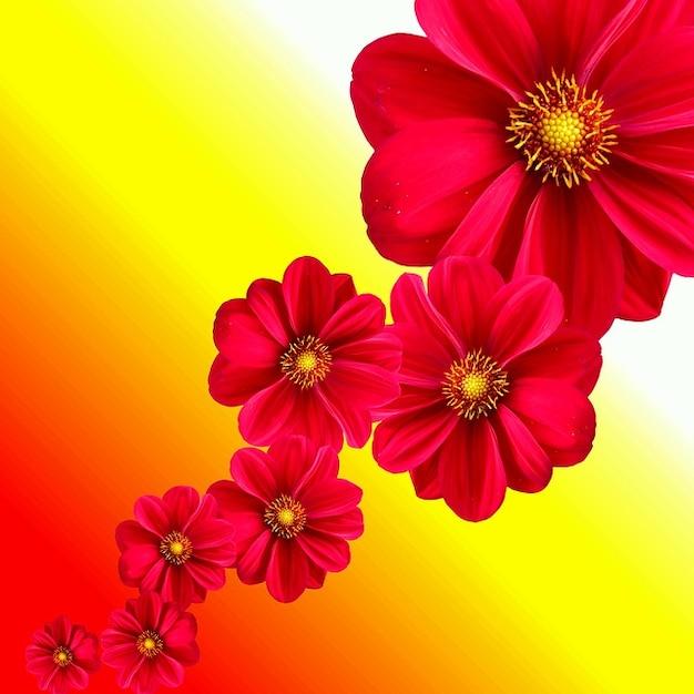 Jardim de flores d?lia natureza planta Baixar fotos ...