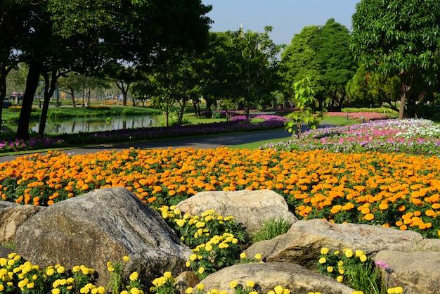 Jardim formal ajardinado. belo jardim. Foto Premium